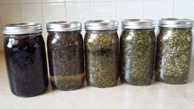 Whole lotta tincture going on...