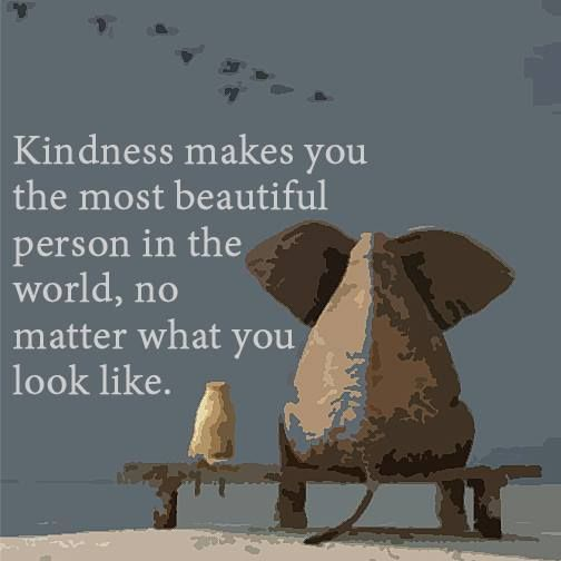 Kindness-makes-you-the-most-beautiful-person-in-the-world-no-matter-what-you-look-like.jpg