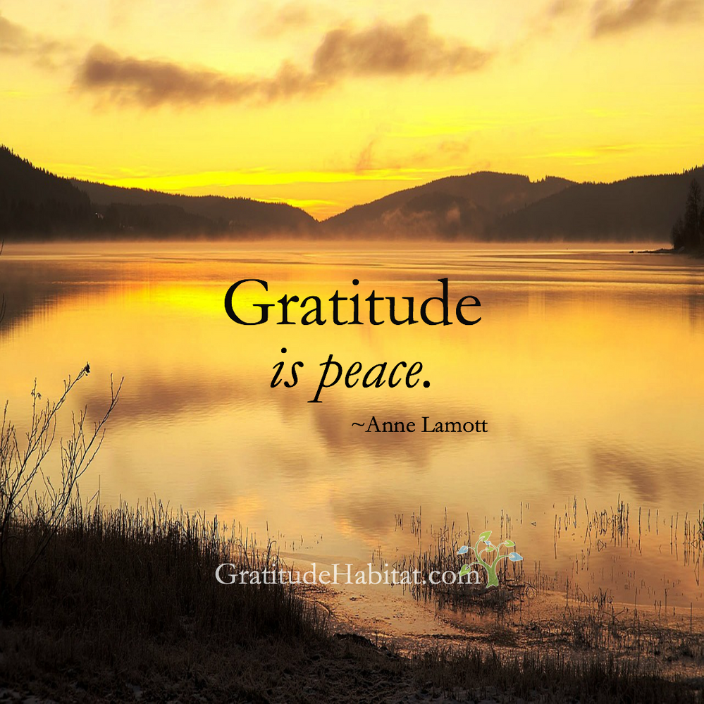 Gratitude-is-peaceIN.png