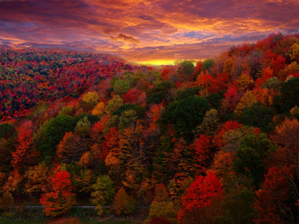 fall sunrise.jpg