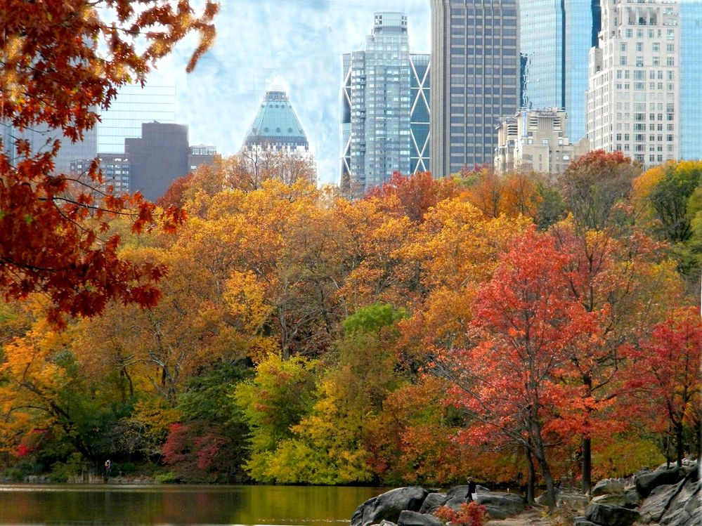 autumn_fall_colors_clip_art_5.jpg