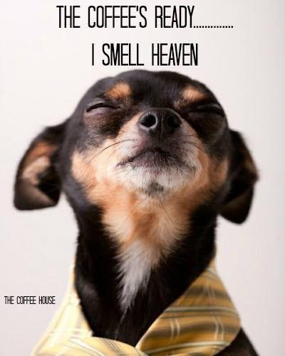 coffee smells like heaven.jpg