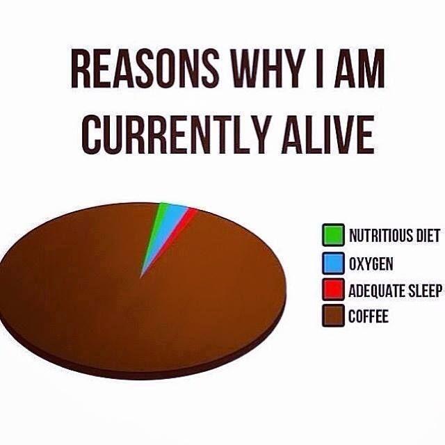 reasons.jpg