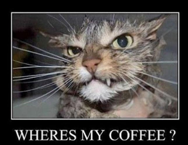 where's my coffee.jpg