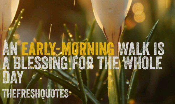 An-early-morning-walk-is-a-blessing-for-the-whole-day..jpg
