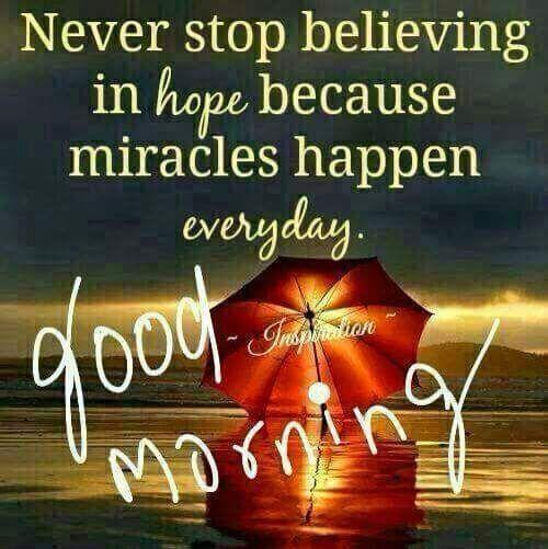 FB_IMG_1538923486091.jpg