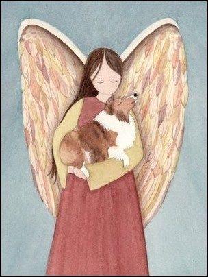 Sheltie Angel-.jpg