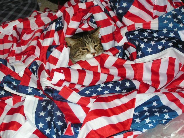 Ahhh, I loves me some flag comfort.