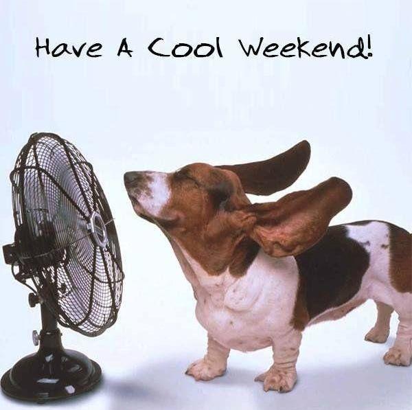 enjoy-the-weekend-quote.jpg