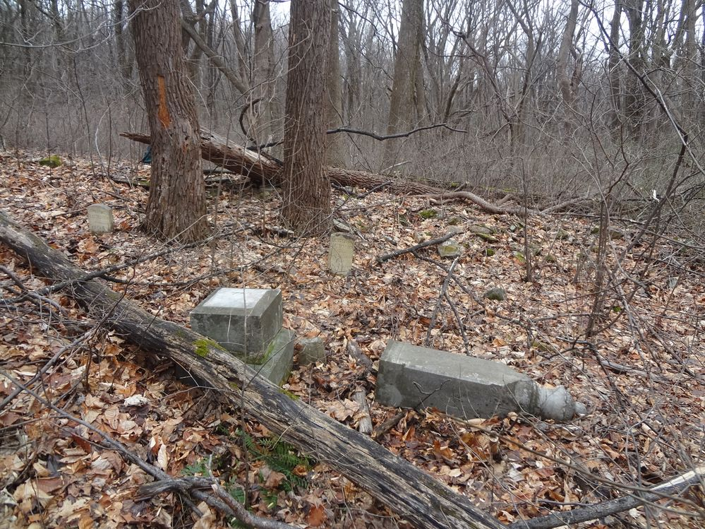 Clatterbuck Cemetery -- mostly fieldstones, but there were three inscribed headstones and footstones.  It took us 2 forays to find this one.