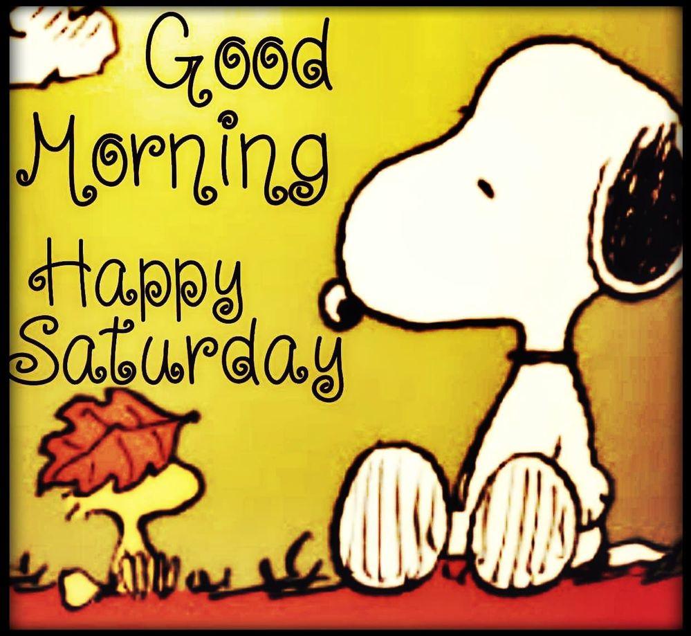 363927-Good-Morning-Happy-Saturday.jpg