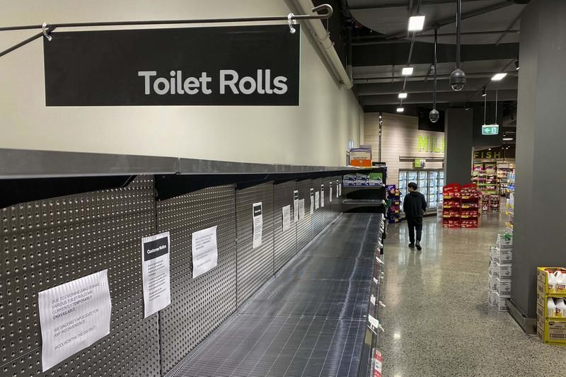 toiletrolls800.jpg