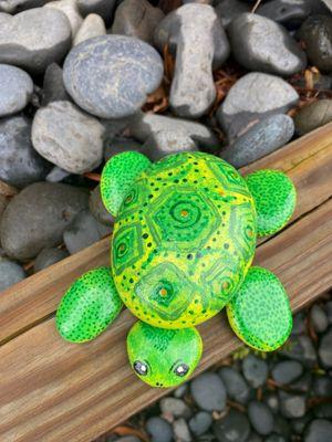 Rocks Turtle Top.jpg