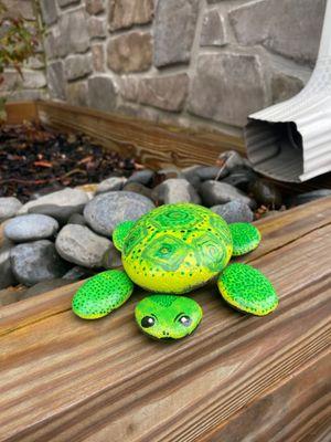 Rocks Turtle Front.jpg