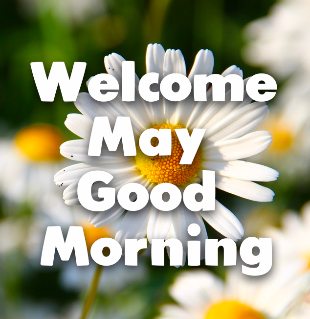 353817-Daisy-Welcome-May-Good-Morning.png