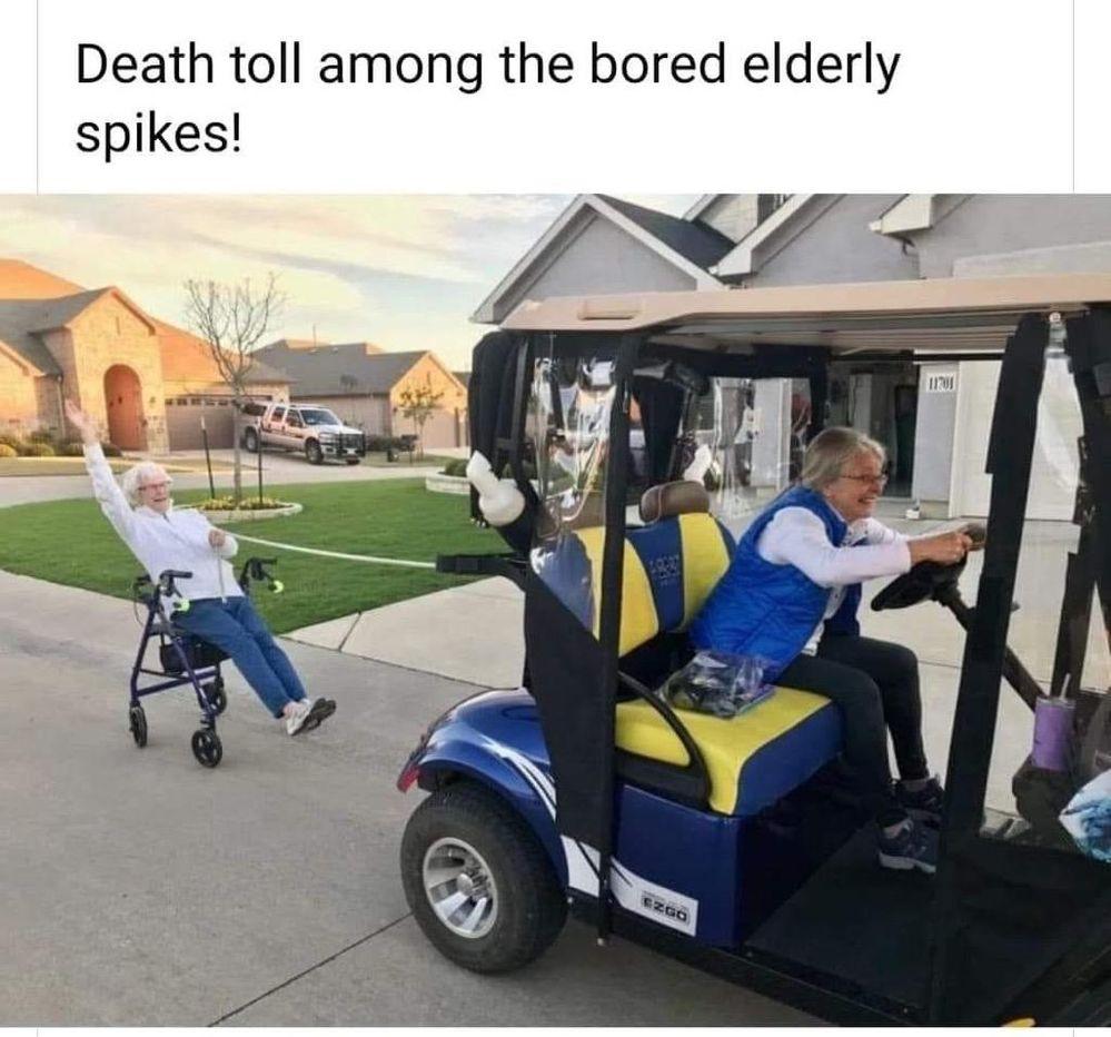 Wild Seniors.jpg