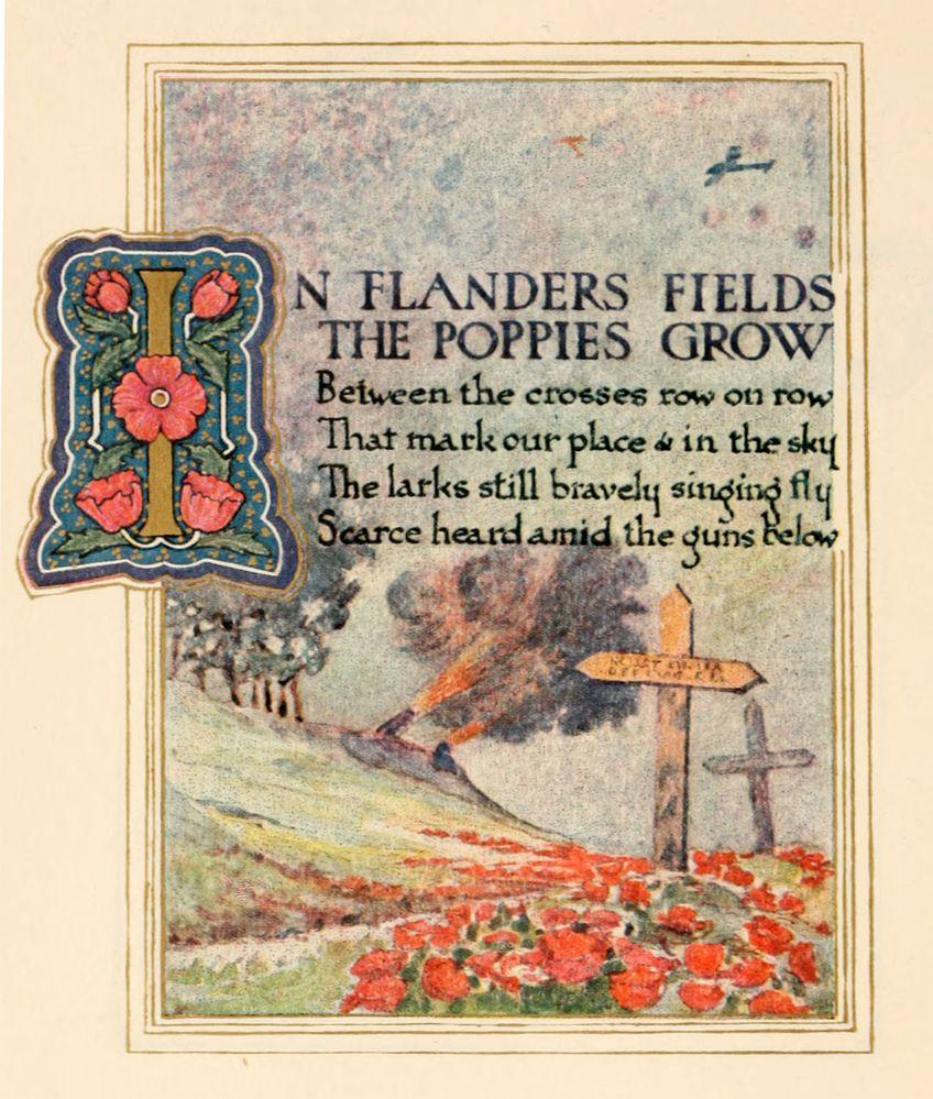 Illustration-John-McCrae-In-Flanders-Fields-poem.jpg