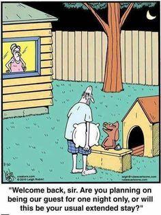 725cea24a3ae79dc0126656e7d8a146e--in-the-dog-house-funny-cartoons.jpg