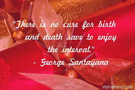 There-is-no-cure-for-birth-and-death-save-to-enjoy-the-interval.-George-Santayana.jpg
