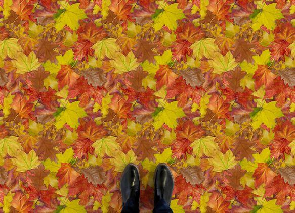 autumn-leaves-flooring-orange-feet.jpg