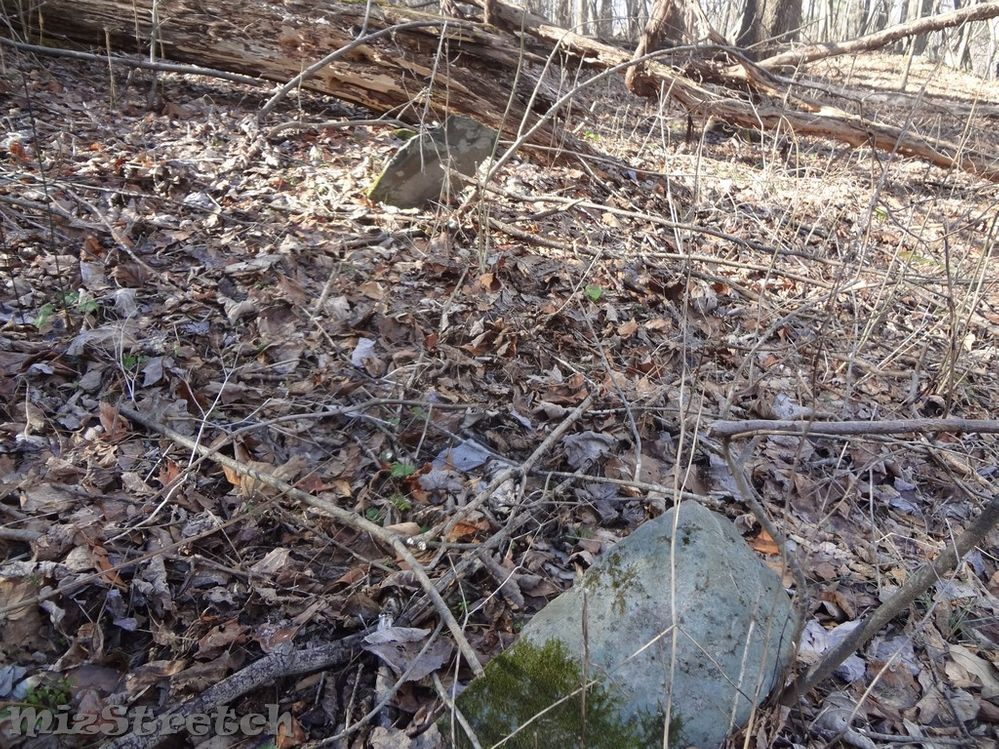 Many of the family cemeteries were marked with fieldstones -- a headstone and footstone.  They were often uninscribed since the burials were on family property and the family knew who they were.