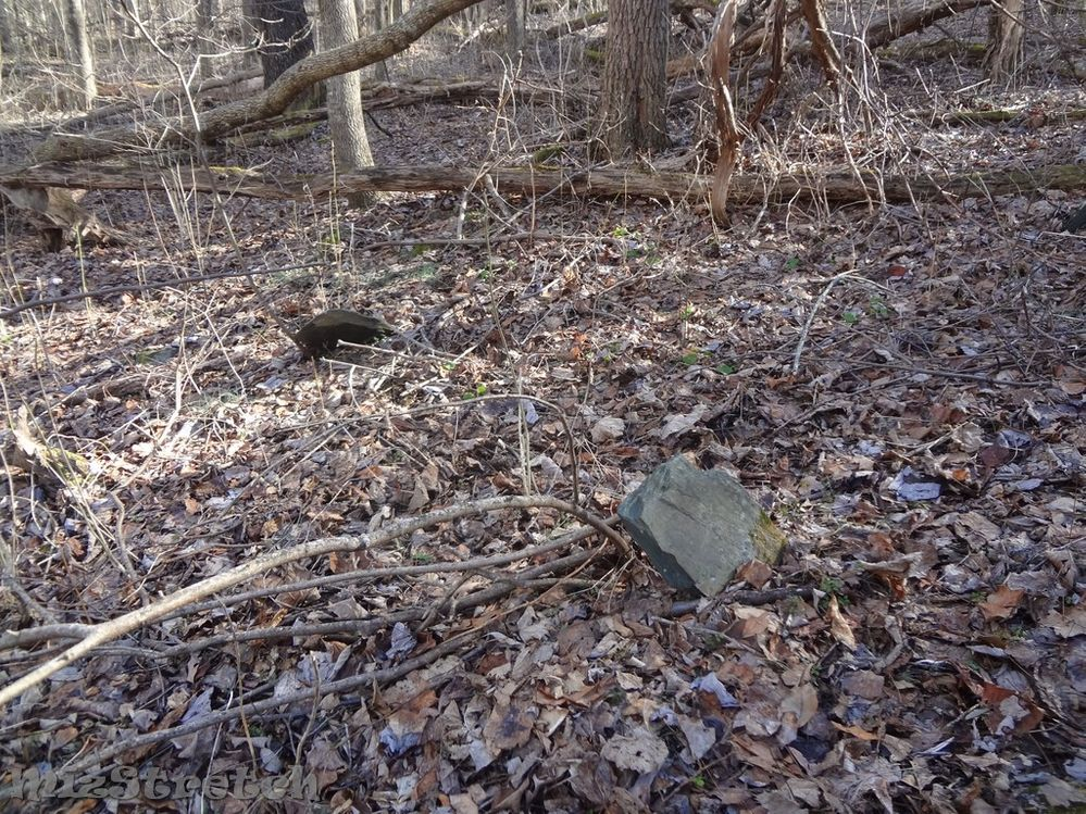 This cemetery with approximately nine native stones was accessed by following an overgrown road trace that was once converted into a trail, but long since abandoned.