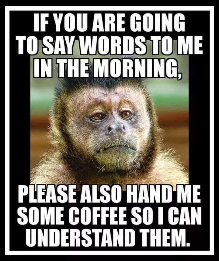 monkey words and coffee.jpg