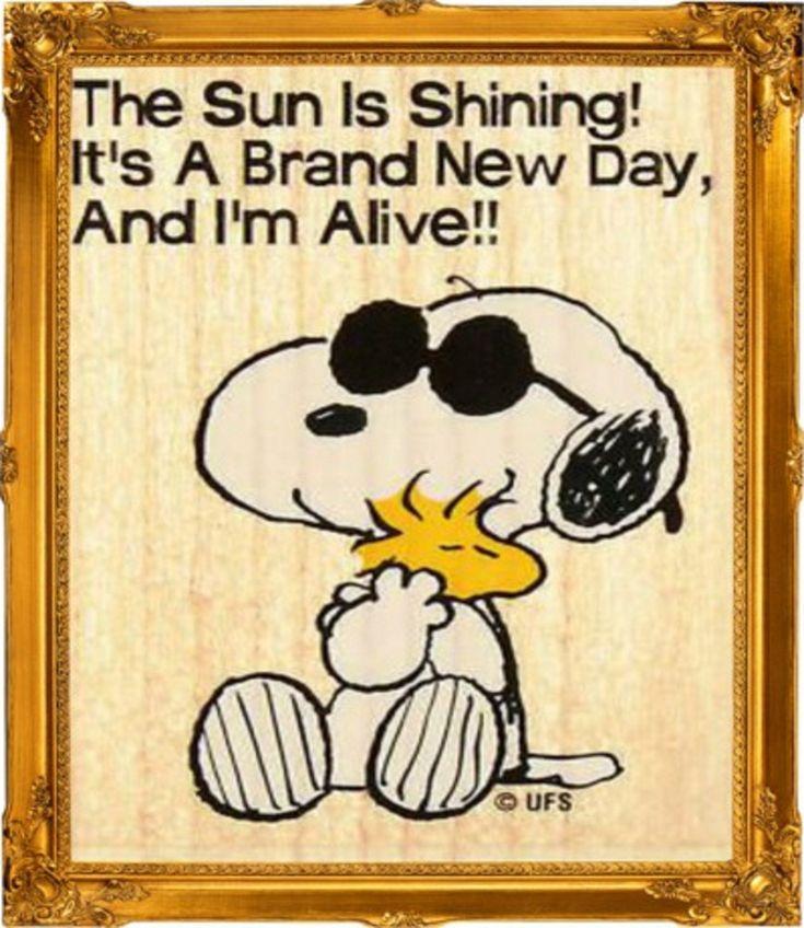 Snoopy and sun.jpg