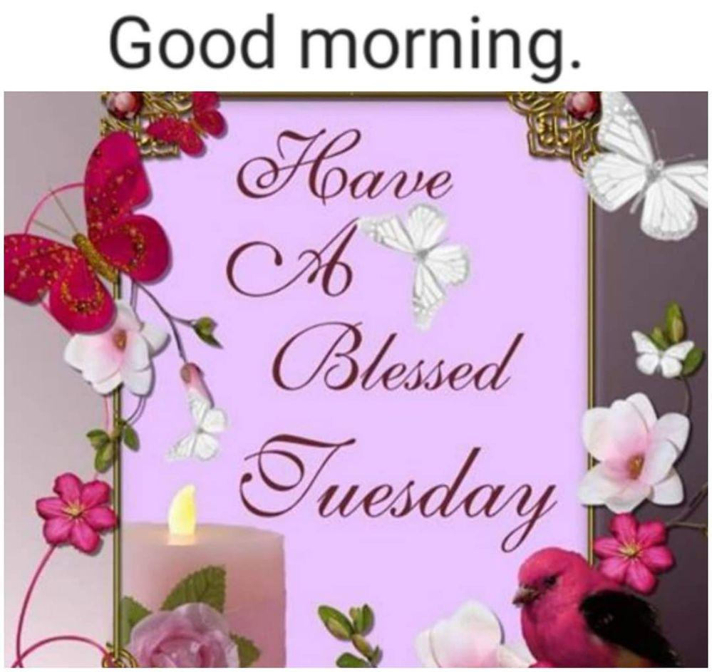 FB_IMG_1634041585374.jpg