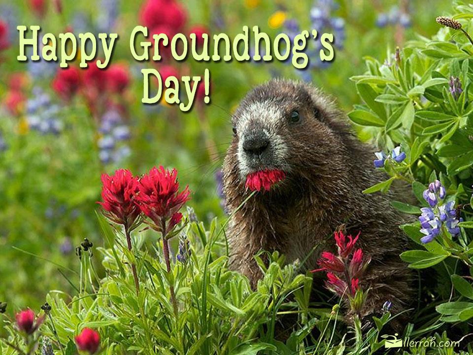 postcard-happygroundhogday.jpg