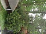 Hilton Head SC condo view.jpg