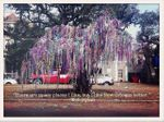New Orleans MardiGras tree.jpg