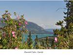 Contest Emerald Lake.jpg
