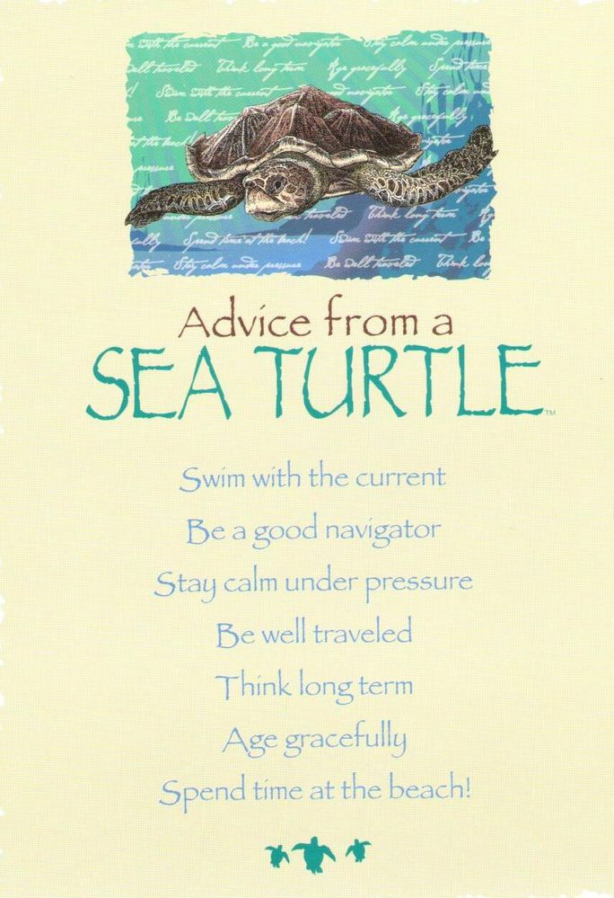 Advice from a Sea Turtle - 3.jpg