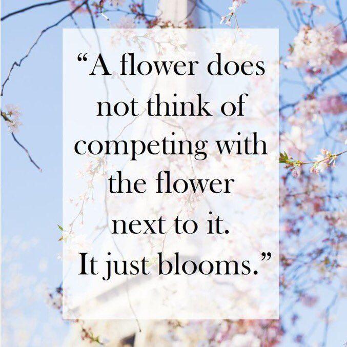 just bloom.jpg