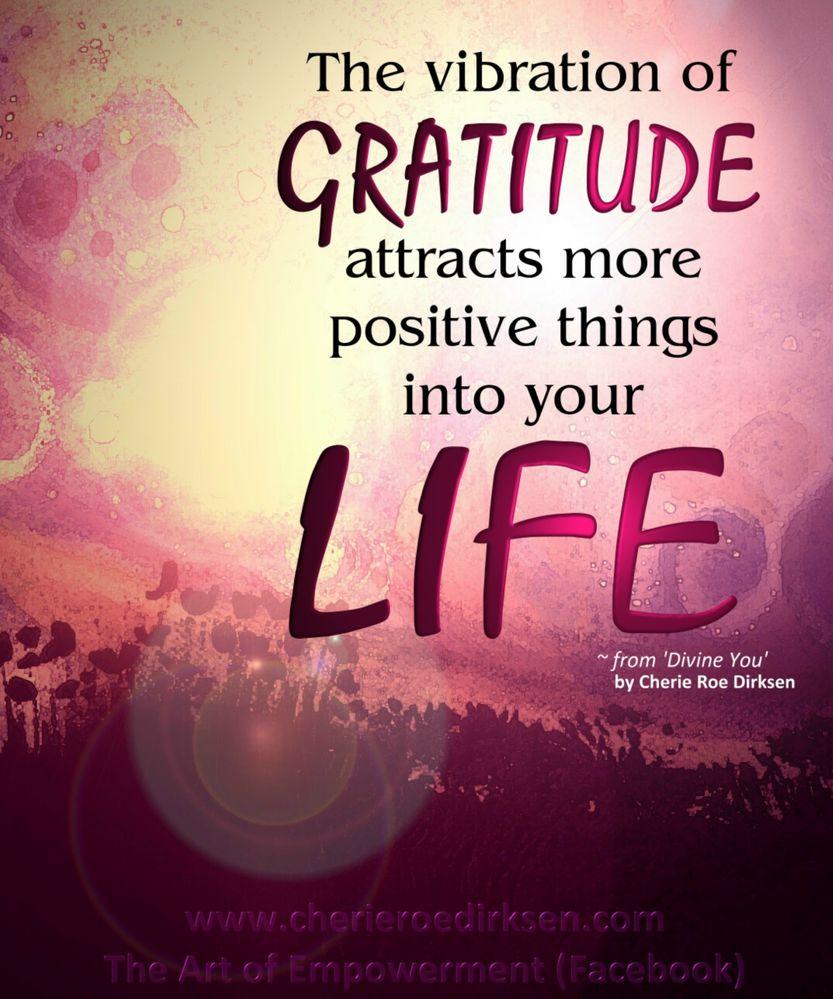 gratitude vibe.jpg