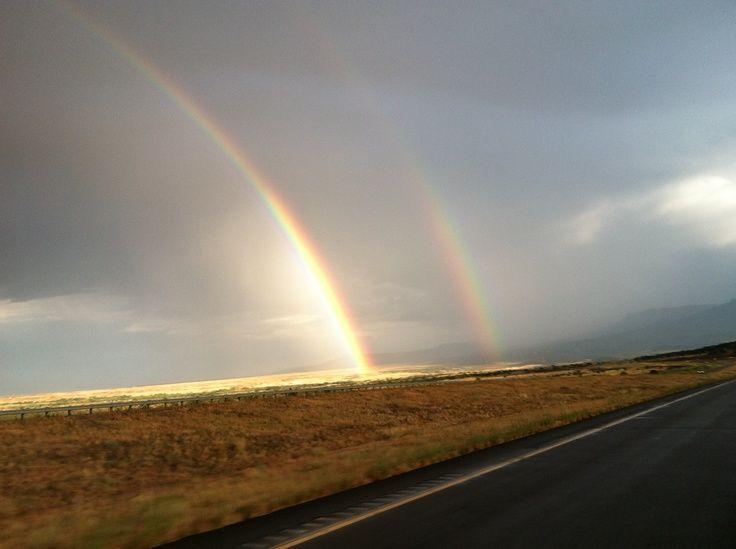 rainbow dbl.jpg