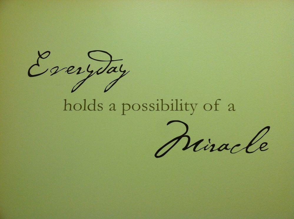 everyday hols possibility.jpg