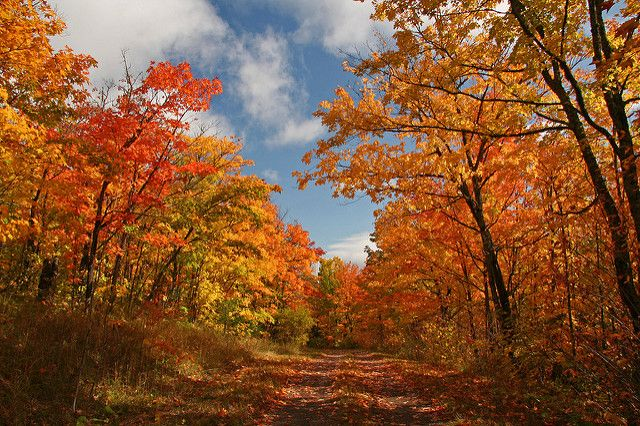 fabulous fall weather.jpg