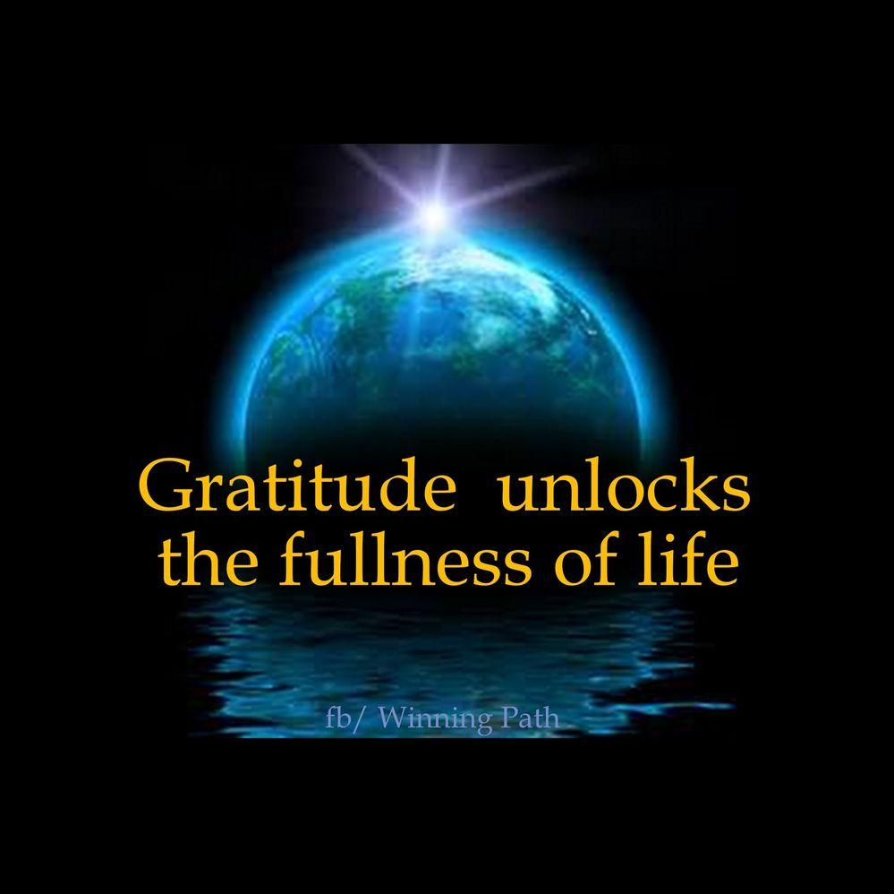 gratitude unlocks fullness.jpg