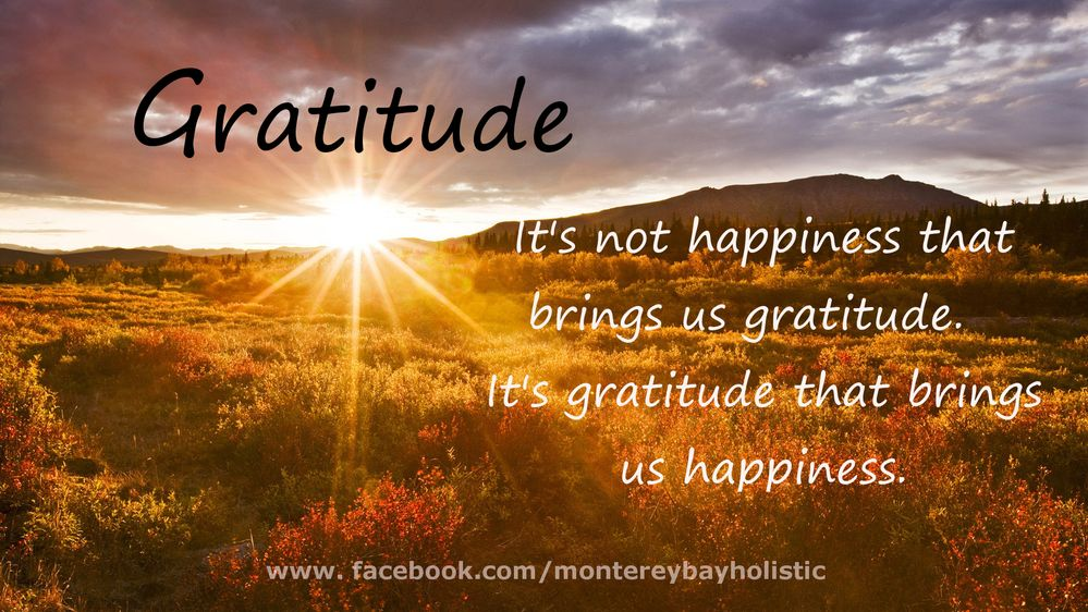 gratitude brings happiness.jpg
