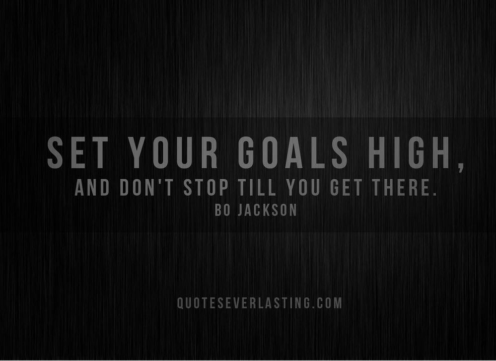 set goals high.jpg