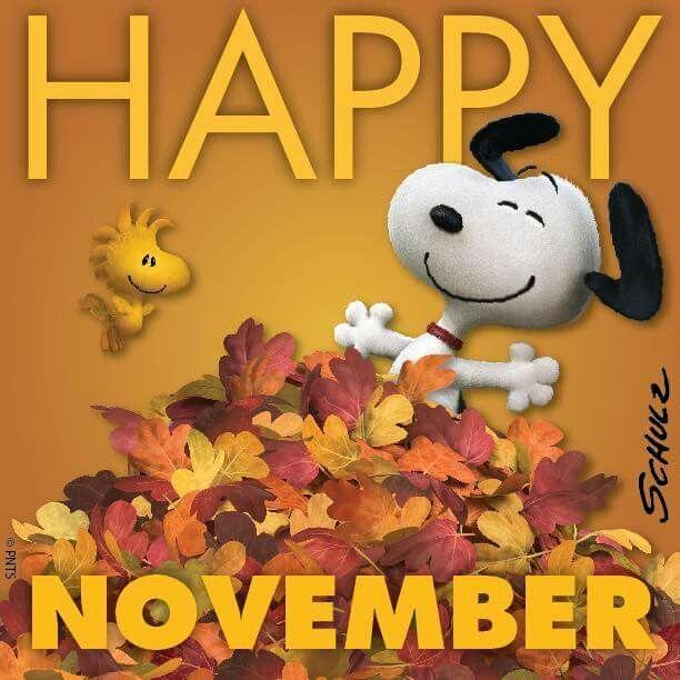 happy november.jpg