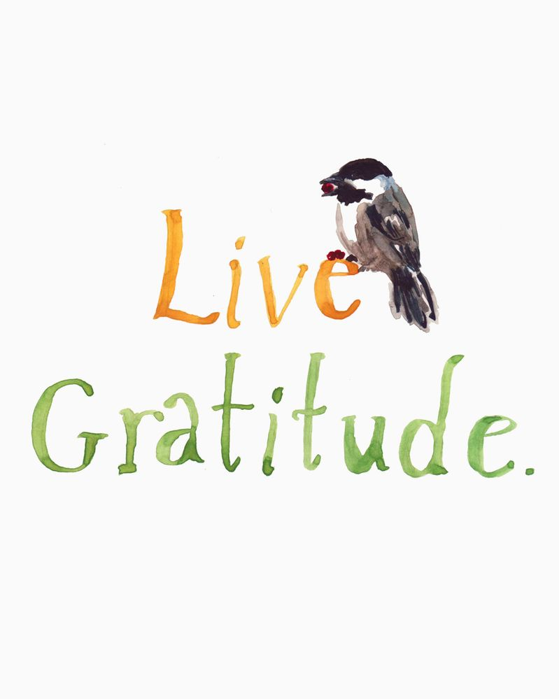 live-gratitude.jpg