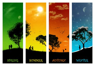 four_seasons_by_nalmes.jpg