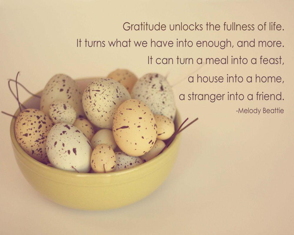 gratitude-quotes.jpg
