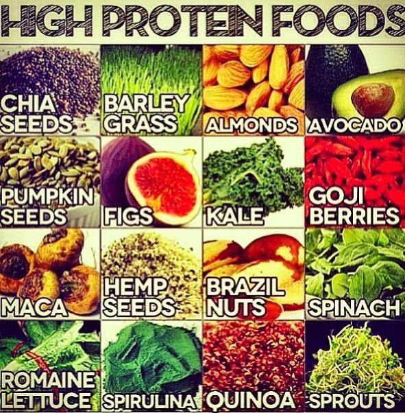 vegan protein sources.jpg