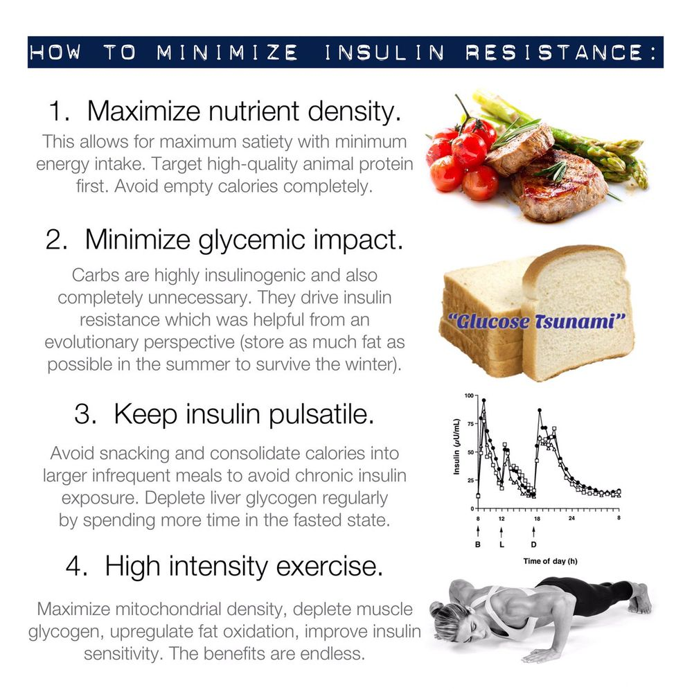 how to minimize insulin resistance.jpg