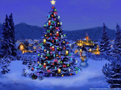 christmas-tree-snow-naturewallpaperA.jpeg