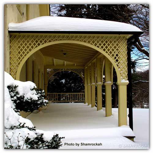 snowy-winter-scenes-2.jpg